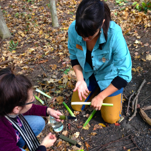 foraging and cooking workshop