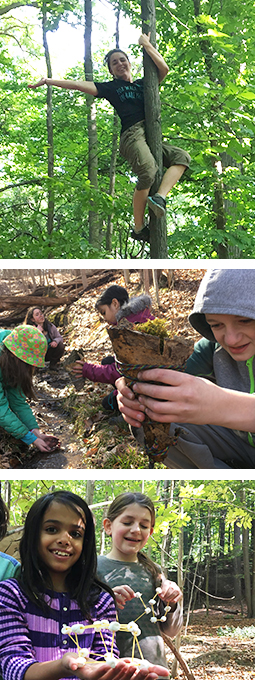 earthworks trackers fall forest school