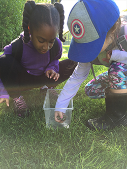 earthworks after school nature explorers